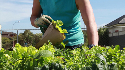 How To Use Social Media To Find A Landscaping Or Gardening Job - Bloggeries | Bloggeries | Scoop.it