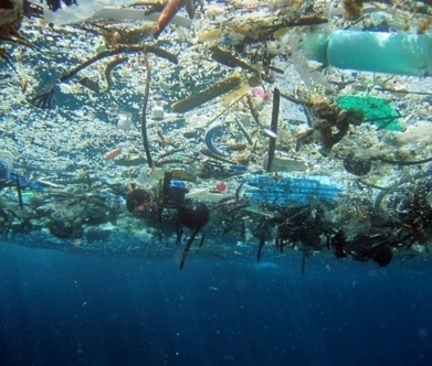There's more plastic debris in the oceans than we think | Farming, Forests, Water, Fishing and Environment | Scoop.it