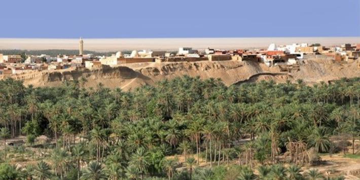 Préhistoire : des traces de l'Homo sapiens dans le sud tunisien il y a près de 100.000 ans | France TV | Kiosque du monde : A la une | Scoop.it