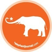 elephant journal: Yoga, Sustainability, Politics, Spirituality. | therapy and nutrition | Scoop.it