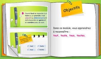 TICs en FLE: Grammaire : trois modules de formation en ligne   la classe cours fle grammaire   Scoop.it