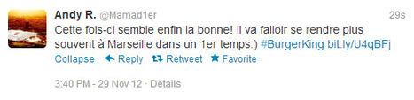 FAST FOOD – Burger King débarque (vraiment) en France | Fast food et réseaux sociaux | Scoop.it