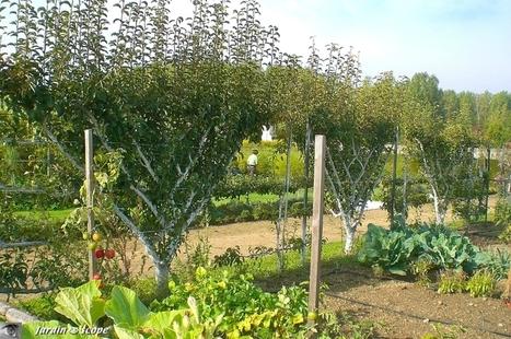 Le Pense-jardin des travaux à faire en septembre - Le JardinOscope coté pratique, les bons gestes à faire au jardin | Les colocs du jardin | Scoop.it