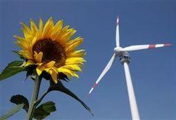 European renewable-energy lobby liquidated | European Voice | Energy | Scoop.it