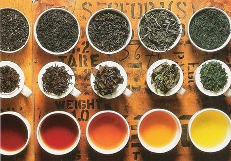 Come Riutilizzare le Bustine del Tè | Consumo Critico, Decrescita, Riuso e Riciclo Creativo | Scoop.it