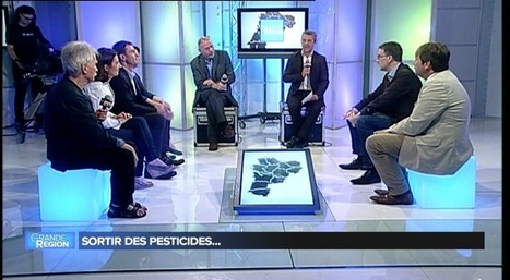 TV7-Débat- La viticulture partie 2 : les pesticides | Le vin quotidien | Scoop.it