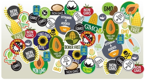 The Misleading War on GMOs: The Food Is Safe. The Rhetoric Is Dangerous. | Sustainable Food Systems | Scoop.it