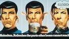 1975 Mr. Spock Advertises Heineken | A Cultural History of Advertising | Scoop.it