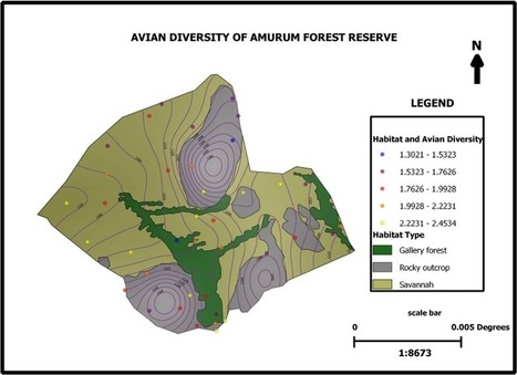 Amurum forest reserve habitat and avifauna mapping with QGIS in Nigeria | OpenSource Geo & Geoweb News | Scoop.it