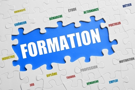 Le blended learning : des formations multisupports - Actionco.fr | Serious Game | Scoop.it