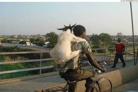 Dit zie je alleen in Afrika | Aardrijkskunde | Scoop.it