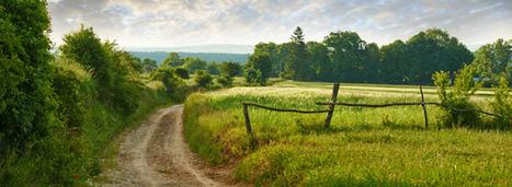 Pourquoi la loi biodiversité ne protégera pas les chemins ruraux | Biodiversité | Scoop.it