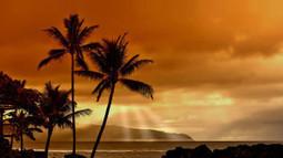 Sunset Beach Wallpaper | FreeWallpaperz | Scoop.it