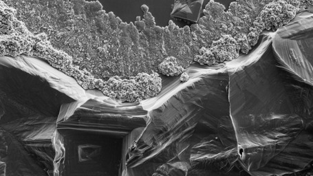 Salt Dissolving Under A Microscope Looks Like The Grand Canyon | Science News | Scoop.it