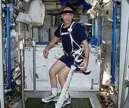 Space experiment sheds light on immune struggles | Astronomy News | Scoop.it