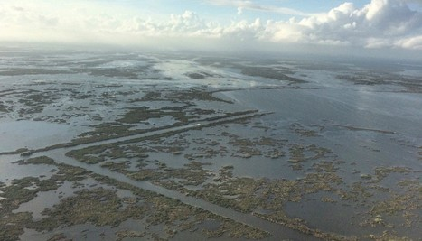 Can Louisiana Hold Oil Companies Accountable For Its Vanishing Coastline? | Sustain Our Earth | Scoop.it