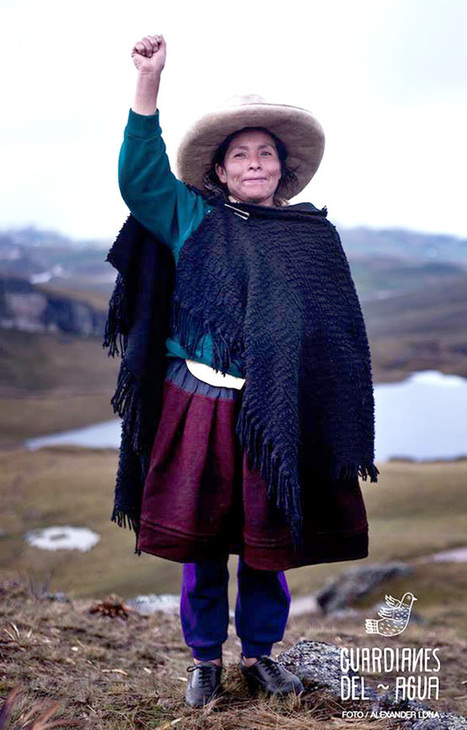 """150,000 Stand With Peruvian Woman in Fight Against World's Largest Gold Mine » EcoWatch (""""tough match"""") 
