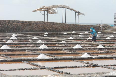 Saltmuseum Salinas del Carmen   The significance of salt   Scoop.it