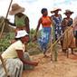 Un programme « vivres contre travail » pour aider les Malgaches et leurs forêts | Action humanitaire dans le monde et ONG | Scoop.it