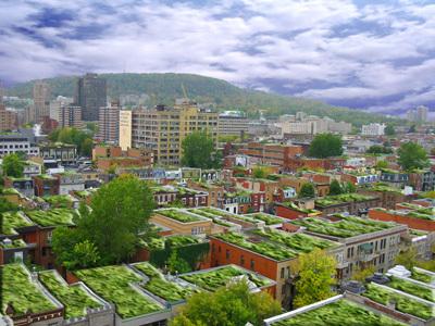 Les toits : verts ou solaires, mais pas déserts. | biodiversité en milieu urbain | Scoop.it