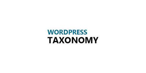 Increase Usefulness With Custom Taxonomy In WordPress | Free & Premium WordPress Themes | Scoop.it