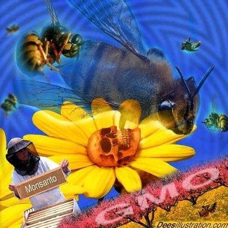 "Russia Warns Obama: Global War Over ""Bee Apocalypse"" Coming Soon   Food,Health and GMO   Scoop.it"