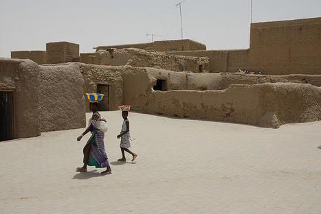 CADTM - Que masque l'annulation de la dette monétaire malienne par la France ? | SandyPims | Scoop.it