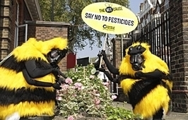Friends of the Earth: Help ban bee-harming pesticides | Ecotoxicology | Scoop.it