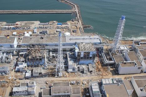 US Nuclear Agency Hid Concerns, Hailed Safety Record as Fukushima Melted - NBCNews.com | Lachtopus' Scoop — OHS Quest | Scoop.it