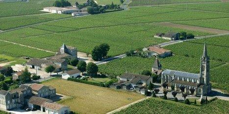 le suspense continue - Sud Ouest   Viticulture et vins   Scoop.it