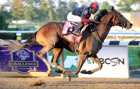 Starting from scratch, Breeders' Cup boosts mainstream TV coverage | Thoroughbred Racing Commentary | Horse Racing News | Scoop.it