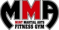 The Mint Martial Arts | The Mint Martial Arts | Scoop.it
