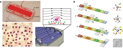The present and future role of microfluidics in biomedical research - Nature | tissue engineering | Scoop.it