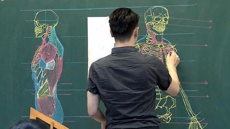 This Taiwanese teacher's anatomical chalkboard illustrations are unreal | NIC: Network, Information, and Computer | Scoop.it