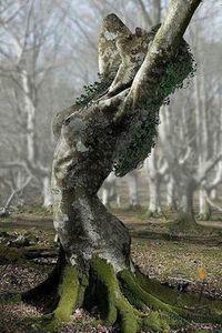 Goddess / Gaia / Mother Earth | Gaia: La diosa madre | Scoop.it