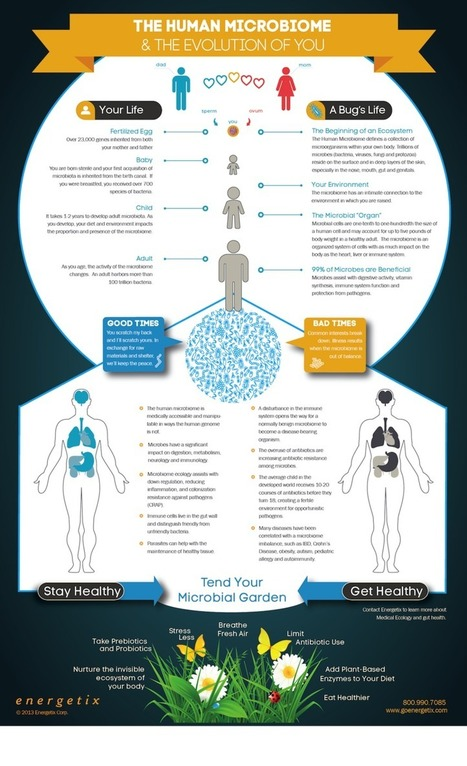 Why Everything We Were Taught About Digestion, Metabolism & Immunity Is Wrong (Infographic) | Diet ,Nutrition and Wellness | Scoop.it