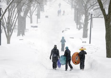 Sick of Winter, Man Turns Joke Into Snow-for-Sale Business | LibertyE Global Renaissance | Scoop.it