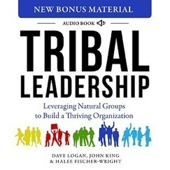 Tribal Leadership — Leveraging Natural Groups to Build a Thriving Organization | Leader Learning Asia | Scoop.it