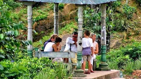 La route du thé – découverte magnifique au Sri Lanka   Le Blog ...   La route du Thé   Scoop.it