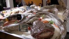 Au salon de l'agriculture, une criée si vous y étiez ! - France 3 Paris Ile-de-France | Fisheries3point0 | Scoop.it