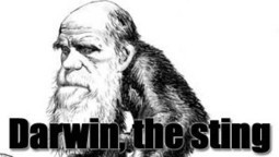 Why Not Make A Comedy About Charles Darwin The Charlatan | News From Stirring Trouble Internationally | Scoop.it