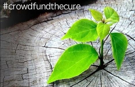 Longevity Crowdfunding Launched by Life Extension Advocacy Foundation (LEAF) - SERIOUS WONDER   Chair et Métal - L'Humanité augmentée   Scoop.it