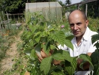 La permaculture, un art de vivre avec la nature   pour mon jardin   Scoop.it