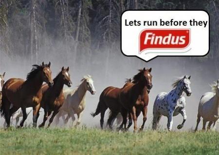LESSIVAGE – Comment Findus tente de redorer sa e-réputation   Communication 2.0 et réseaux sociaux   Scoop.it
