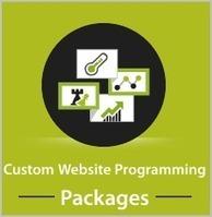 Top & Best Web Design Development Companies List   Best Website Design Company Chandigarh   Scoop.it