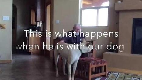 Un hombre con alzhéimer que recupera el habla gracias a su perro | historian: science and earth | Scoop.it