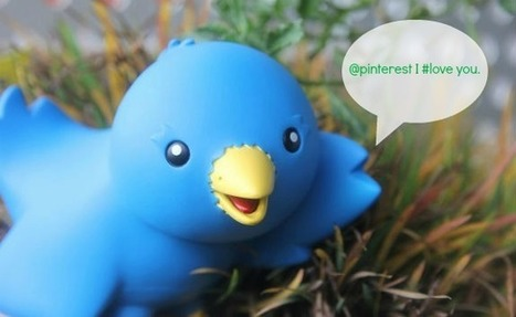 How To Promote Your Pinterest Contest in 140 Characters | Sierra Tierra Marketing | Pinterest | Scoop.it