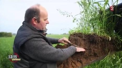 Soigneurs de terre | Tout le web | Scoop.it