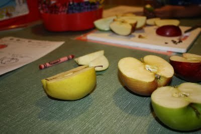 miller moments: A is for Apple Week   Jardim de Infância   Scoop.it