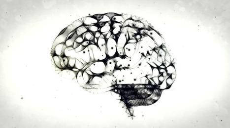 Le bilinguisme et ses effets positifs sur le cerveau - SciencePost | Bilinguisme précoce | Scoop.it